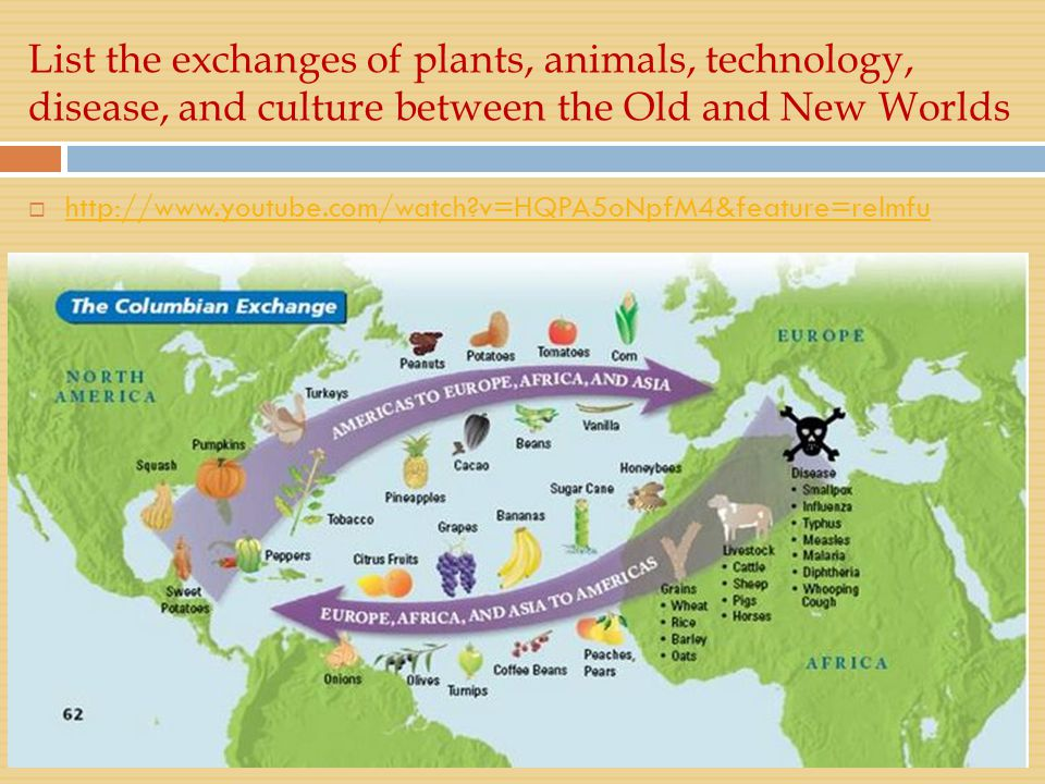List the exchanges of plants, animals, technology, disease, and culture between the Old and New Worlds