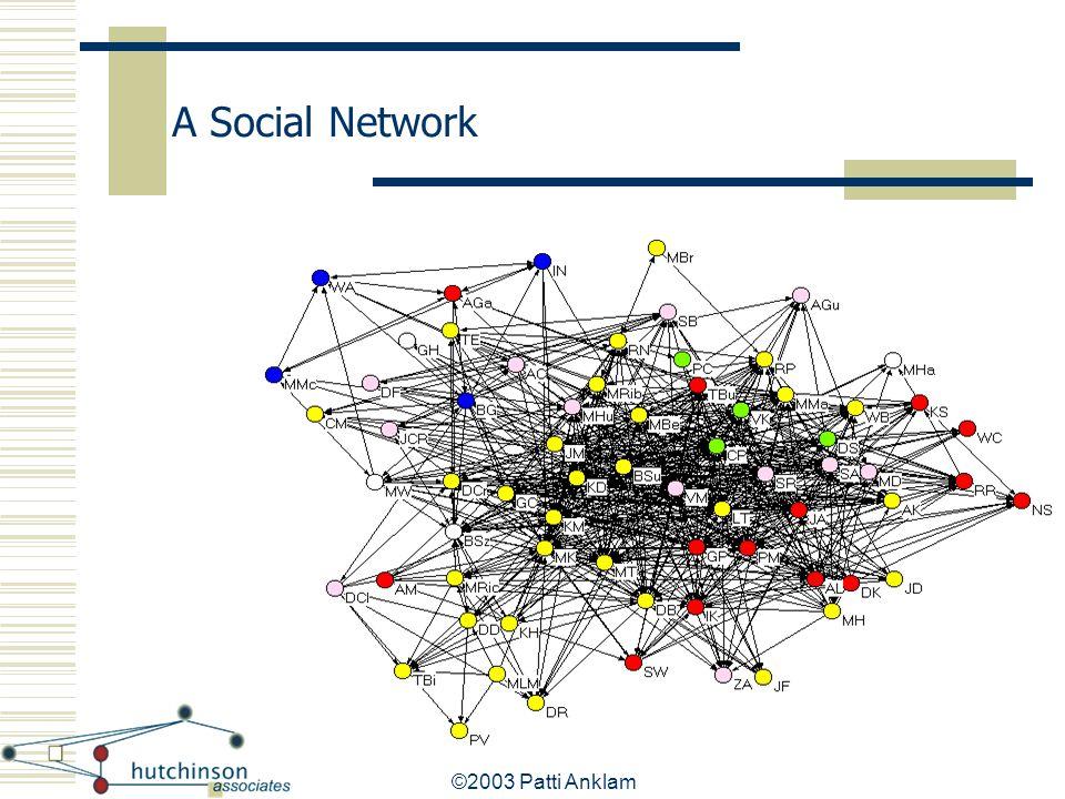 A Social Network ©2003 Patti Anklam