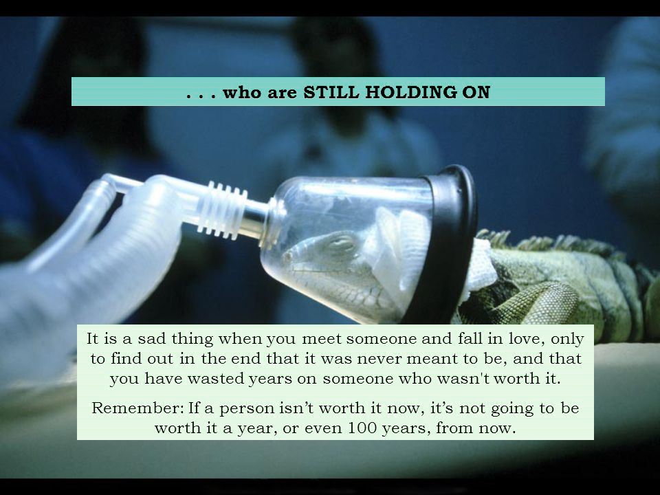 . . . who are STILL HOLDING ON