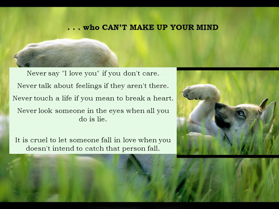 . . . who CAN'T MAKE UP YOUR MIND