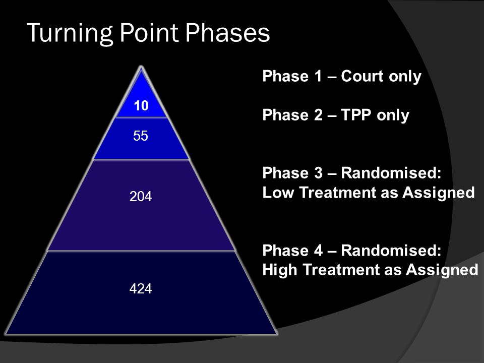 Turning Point Phases Phase 1 – Court only Phase 2 – TPP only