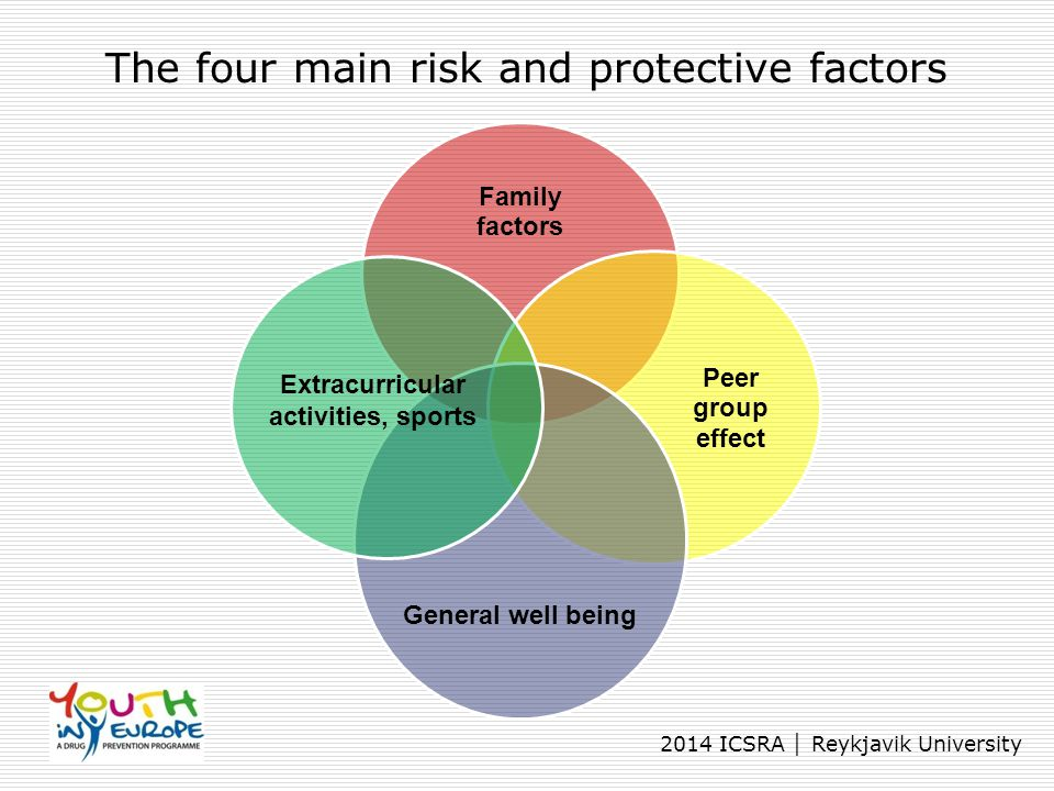 The four main risk and protective factors