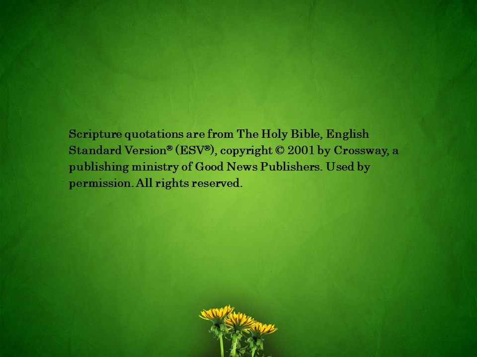 Scripture quotations are from The Holy Bible, English Standard Version® (ESV®), copyright © 2001 by Crossway, a publishing ministry of Good News Publishers.