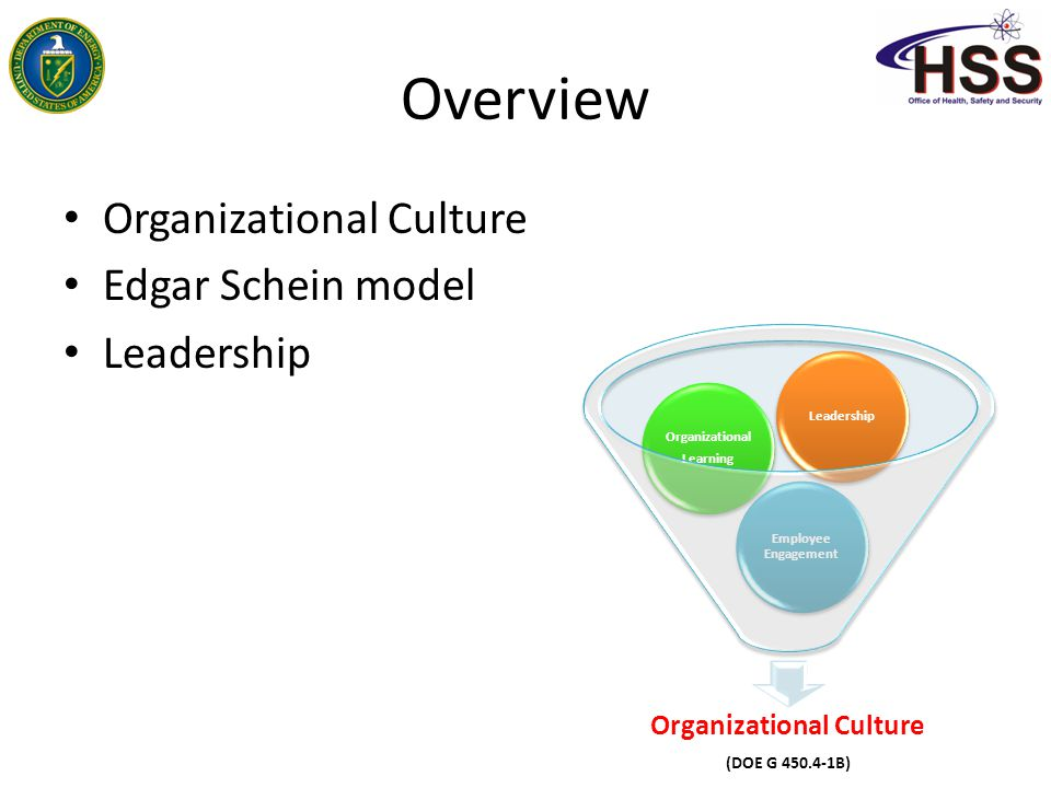 schein classification of organisational culture essay Edgar henry schein (born march 5, 1928), a former professor at the mit sloan school of management, has made a notable mark on the field of organizational development in many areas, including career development, group process consultation, and organizational culture.