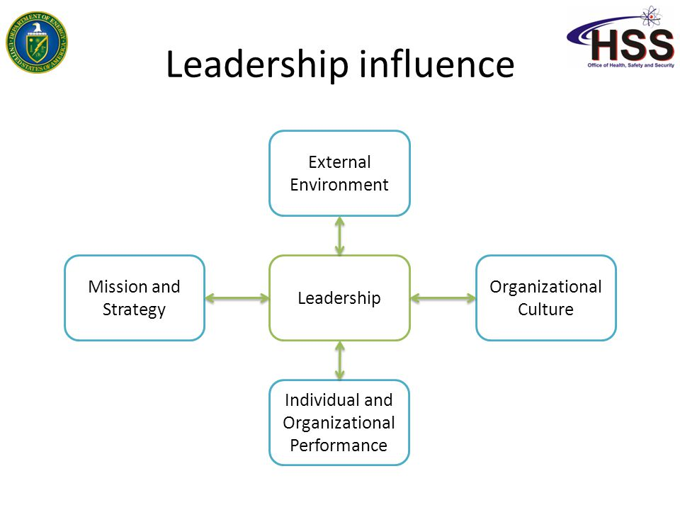 Leadership influence External Environment Mission and Strategy
