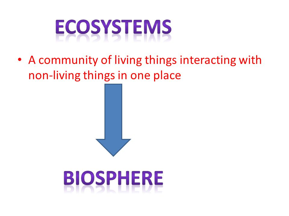 ecosystems A community of living things interacting with non-living things in one place biosphere