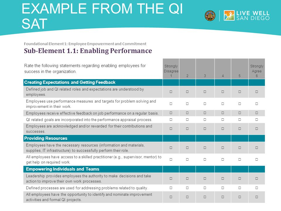 Example from the QI SAT Sub-Element 1.1: Enabling Performance