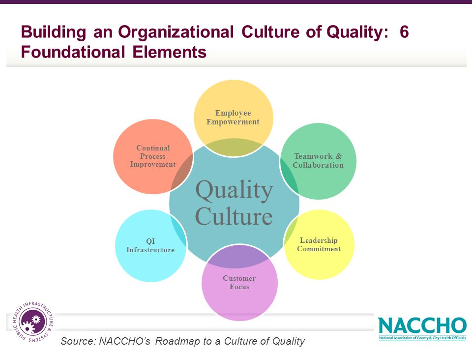 Building an Organizational Culture of Quality: 6 Foundational Elements