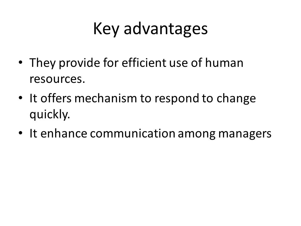 Key advantages They provide for efficient use of human resources.