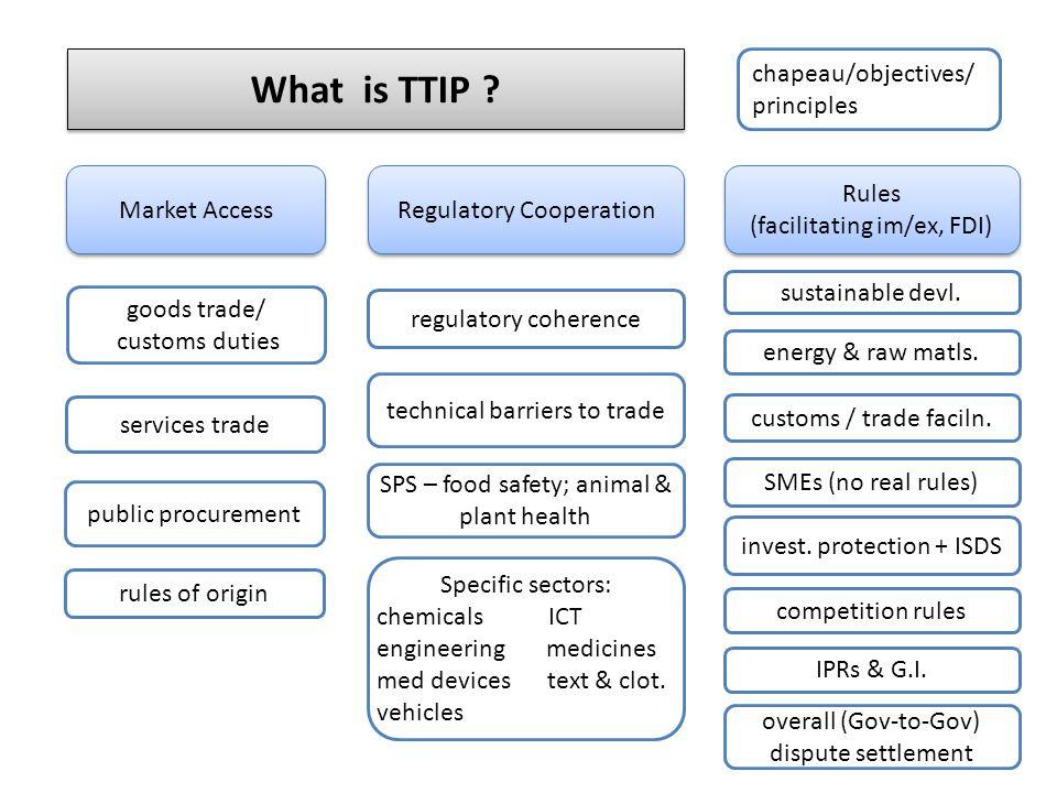 What is TTIP chapeau/objectives/principles Market Access