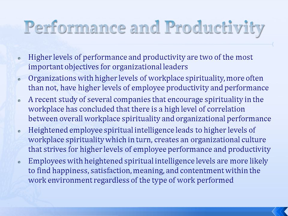 Performance and Productivity