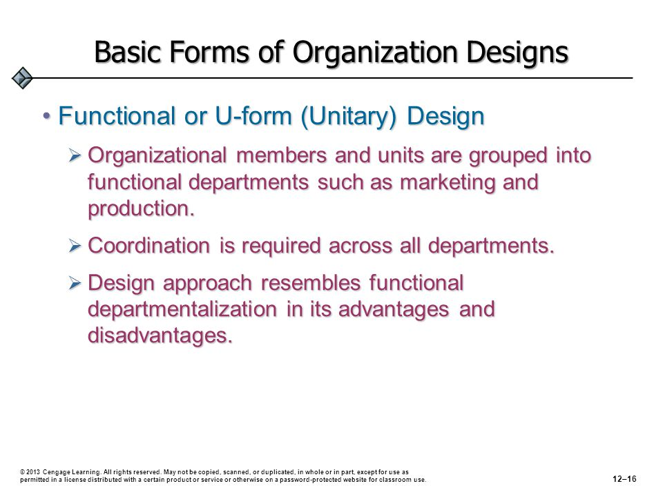 Basic Forms of Organization Designs