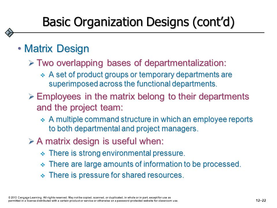 Basic Organization Designs (cont'd)