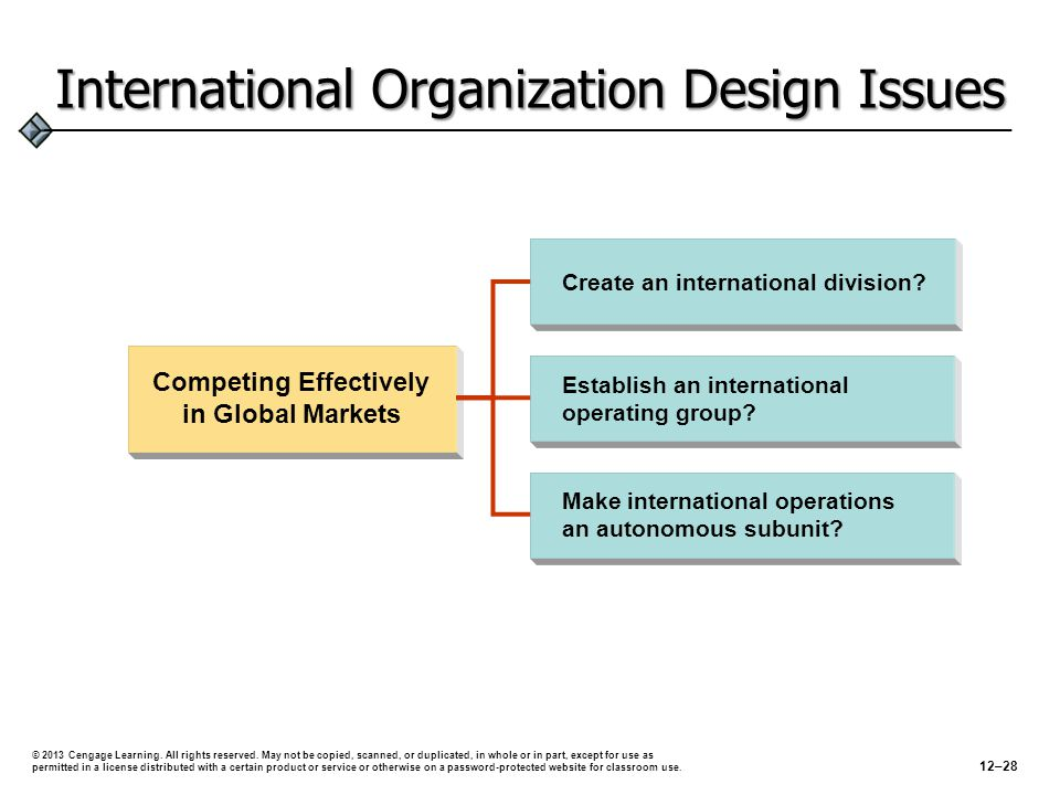 International Organization Design Issues
