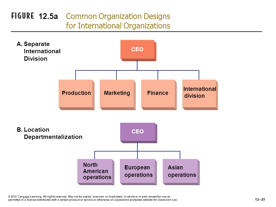 12.5a Common Organization Designs for International Organizations