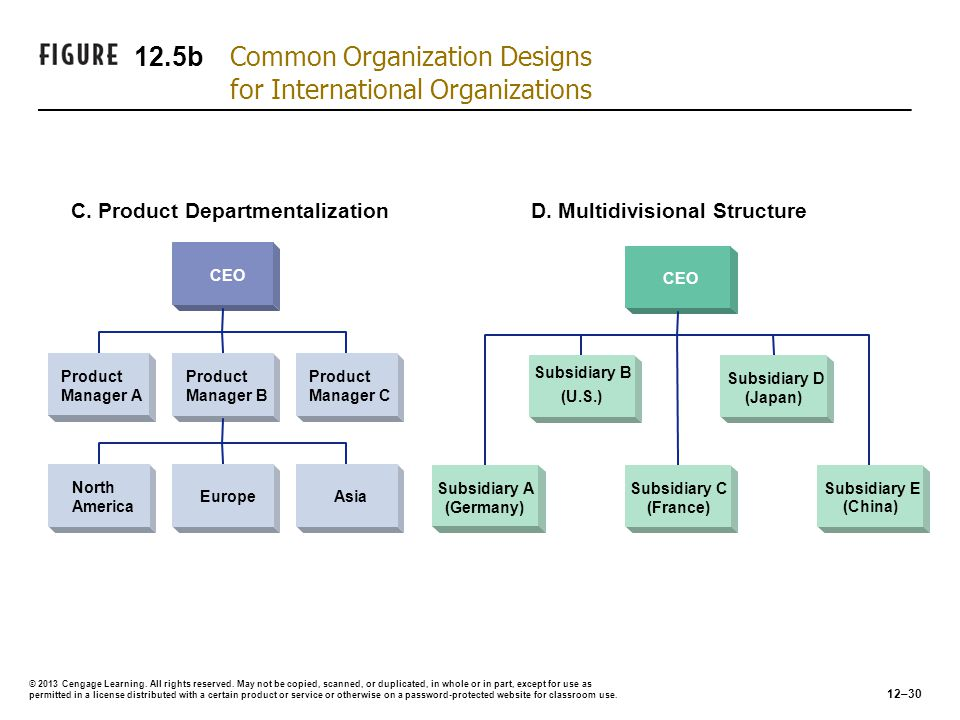 12.5b Common Organization Designs for International Organizations