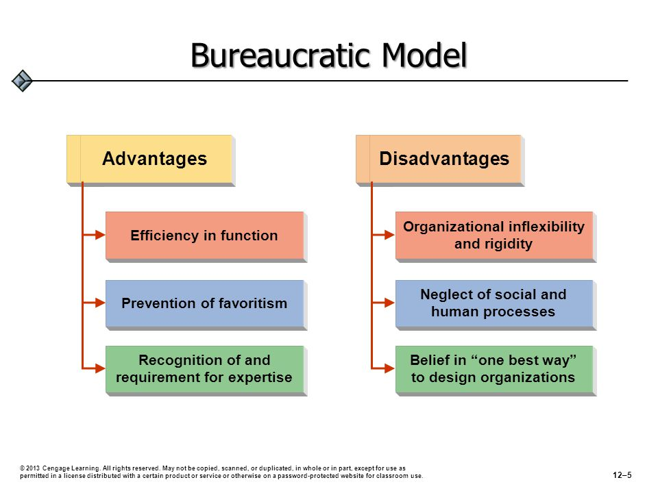 Bureaucratic Model Advantages Disadvantages Efficiency in function