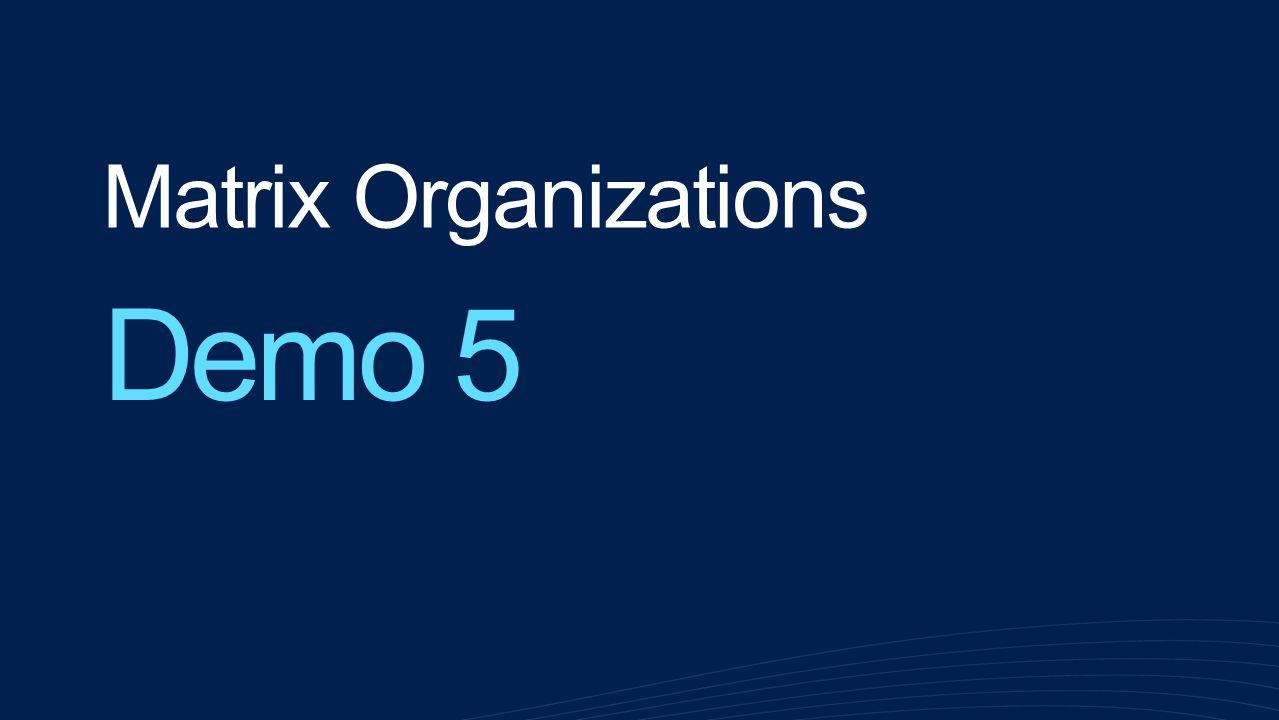 Matrix Organizations Demo 5