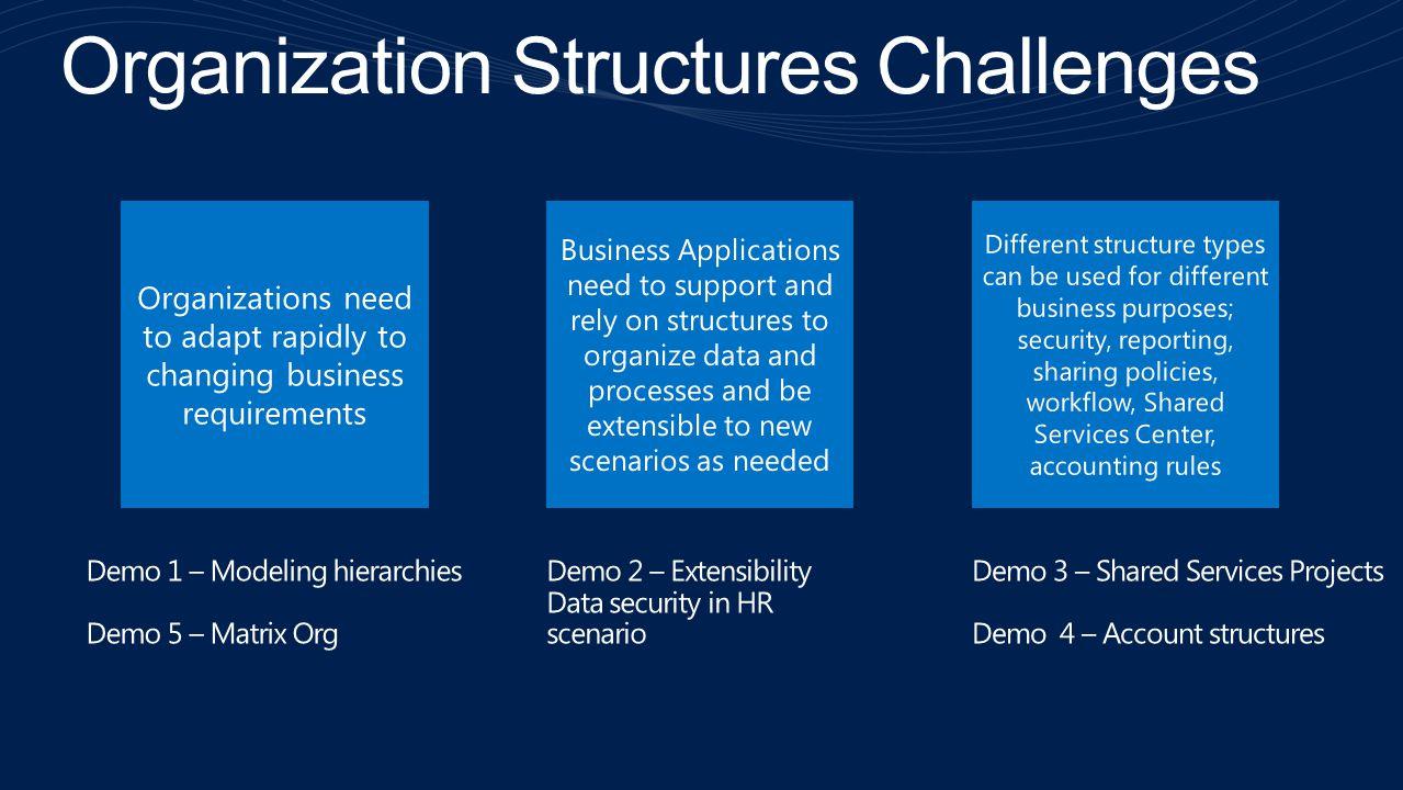 Organization Structures Challenges