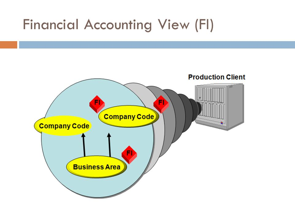 Financial Accounting View (FI)