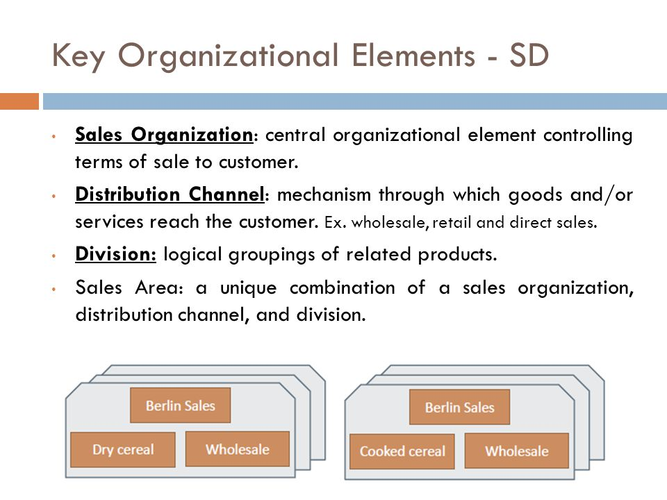 Key Organizational Elements - SD