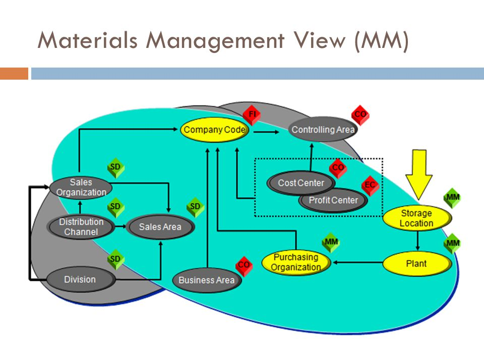 Materials Management View (MM)