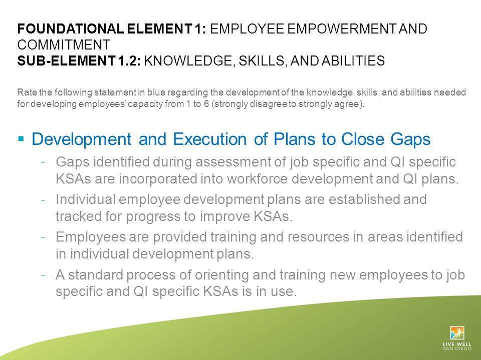 Development and Execution of Plans to Close Gaps