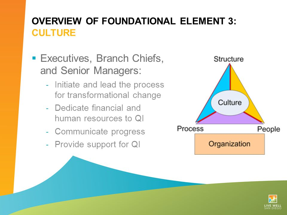 Overview of Foundational Element 3: Culture