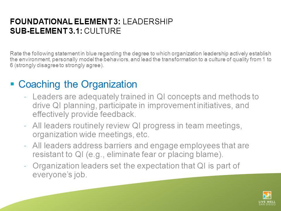Foundational Element 3: Leadership Sub-Element 3.1: Culture