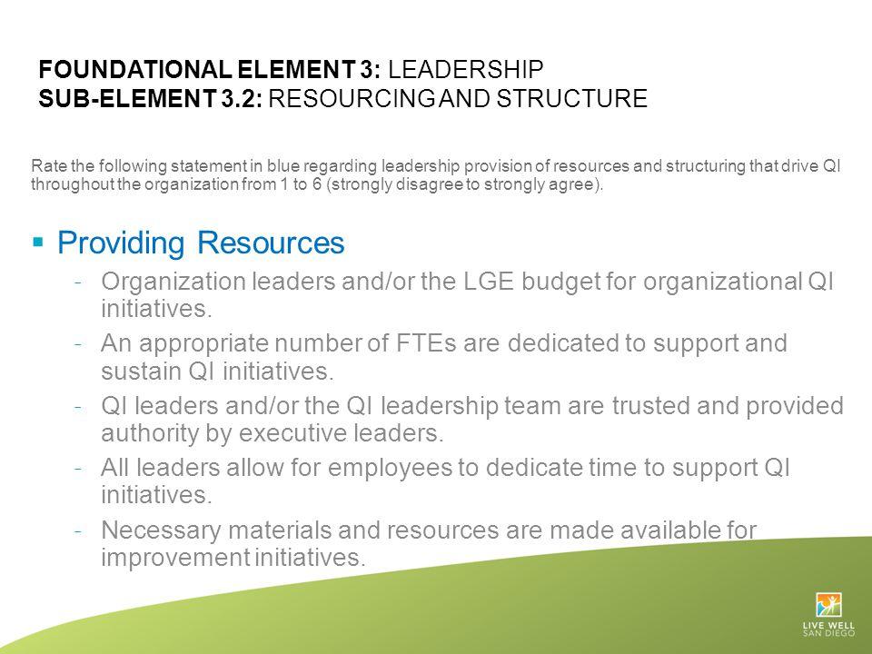 Foundational Element 3: Leadership Sub-Element 3