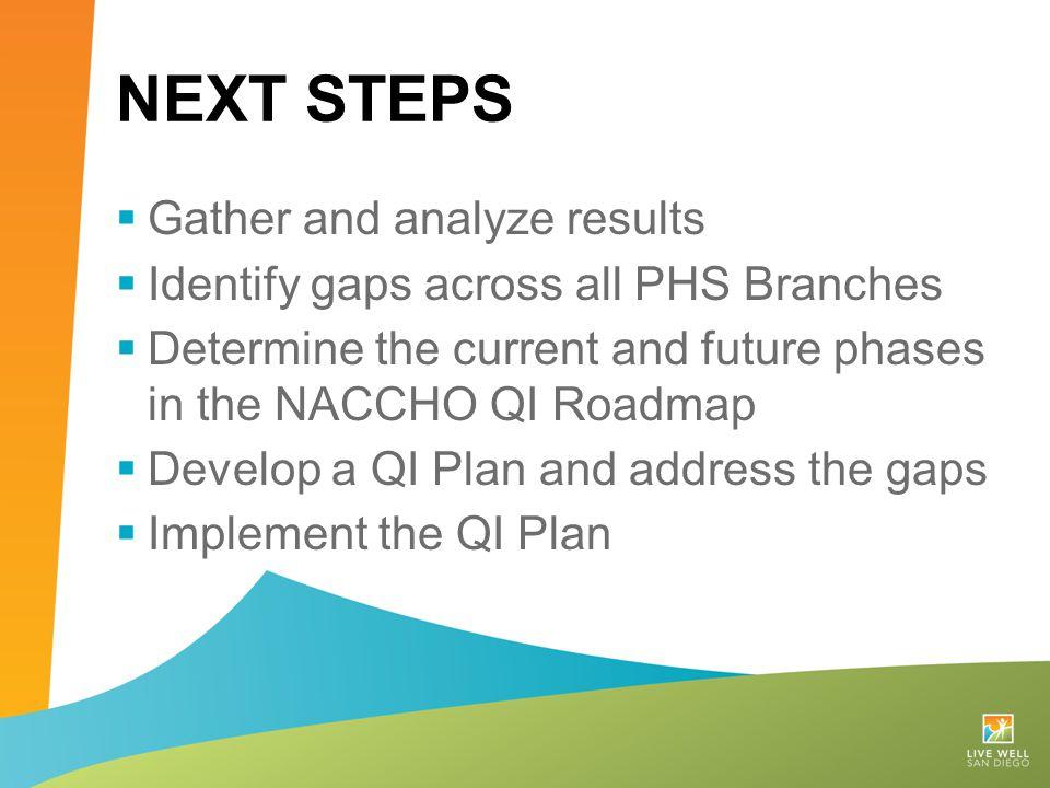 Next Steps Gather and analyze results