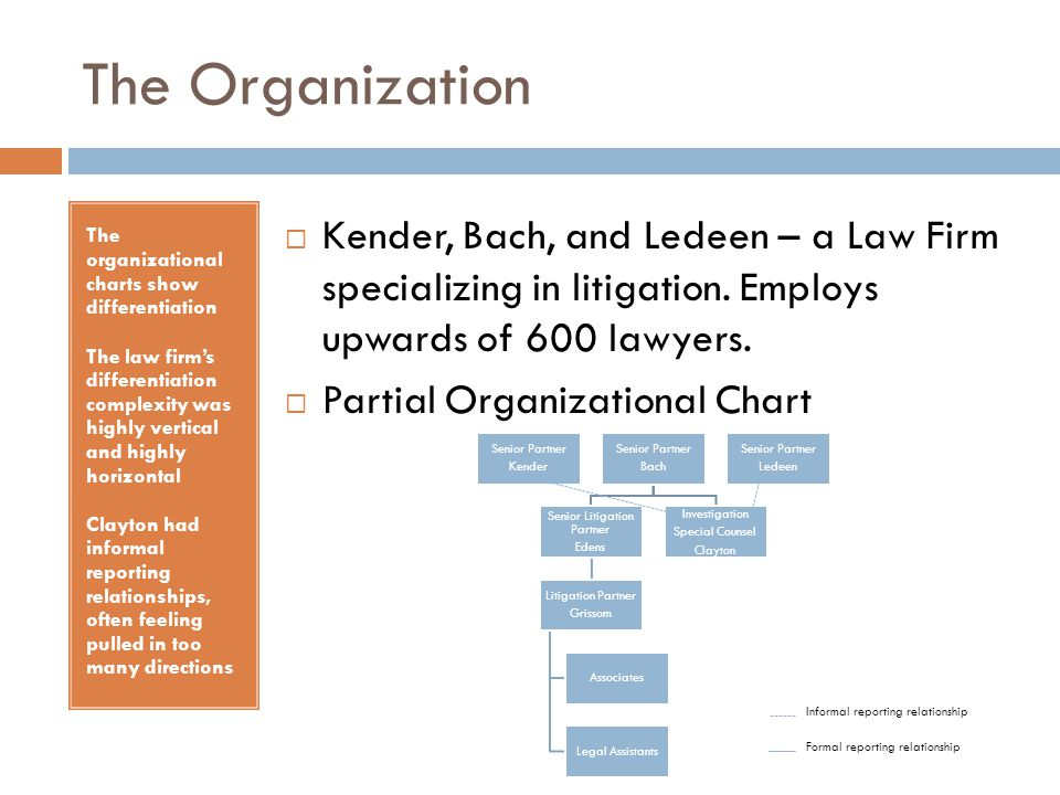 Senior Litigation Partner