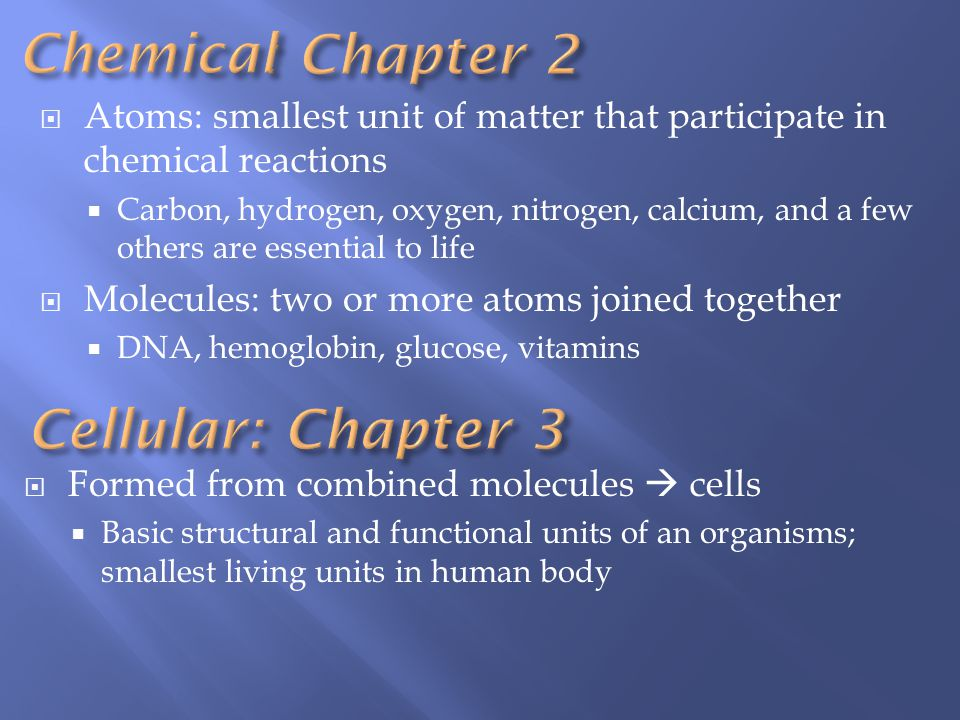 Chemical : Chapter 2 Cellular: Chapter 3