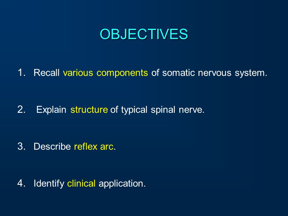OBJECTIVES Recall various components of somatic nervous system.
