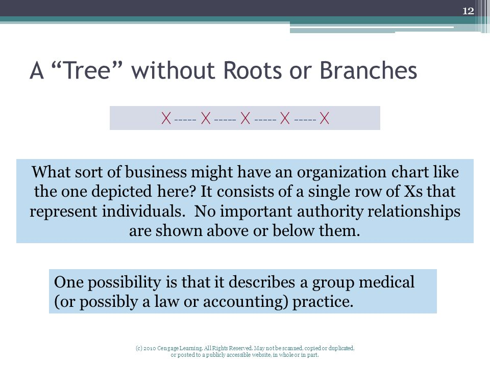 A Tree without Roots or Branches
