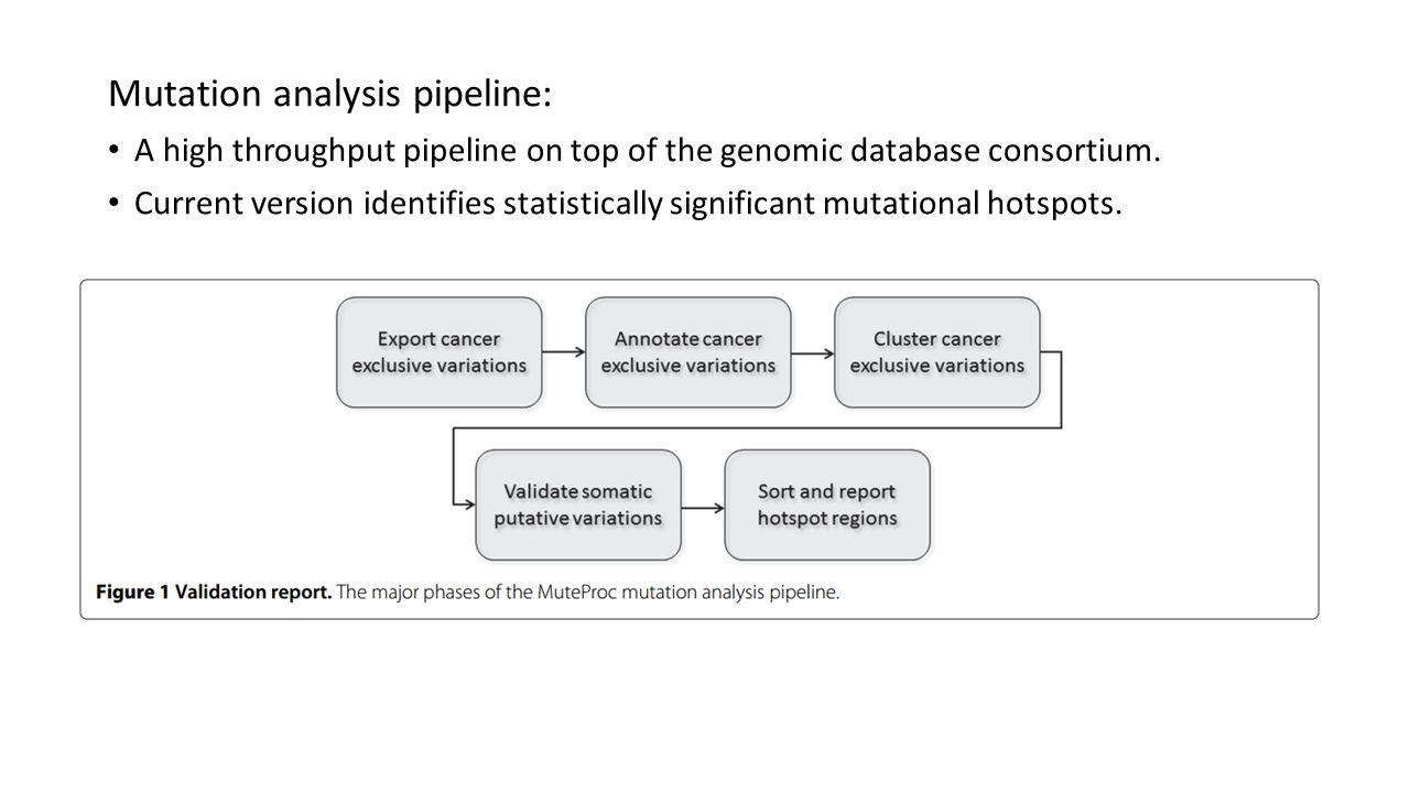Mutation analysis pipeline:
