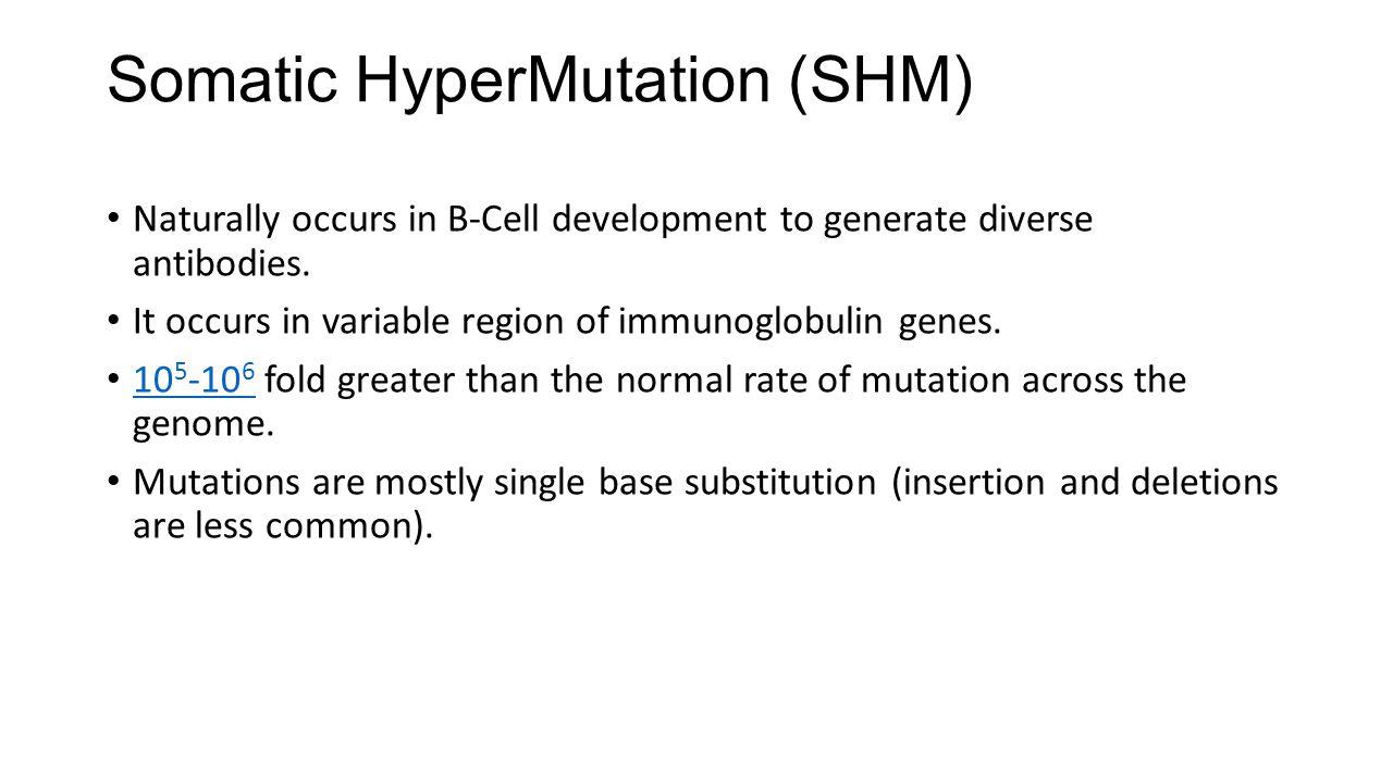 Somatic HyperMutation (SHM)