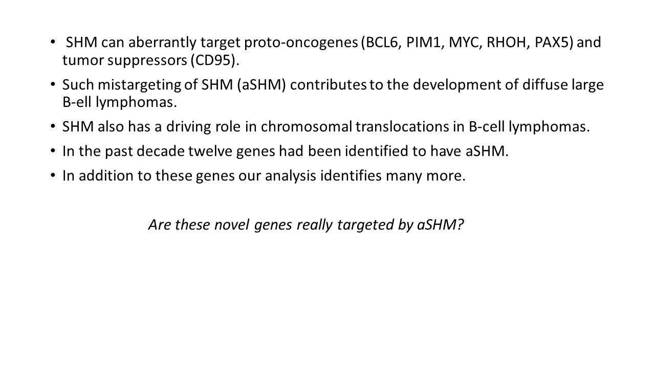 SHM can aberrantly target proto-oncogenes (BCL6, PIM1, MYC, RHOH, PAX5) and tumor suppressors (CD95).