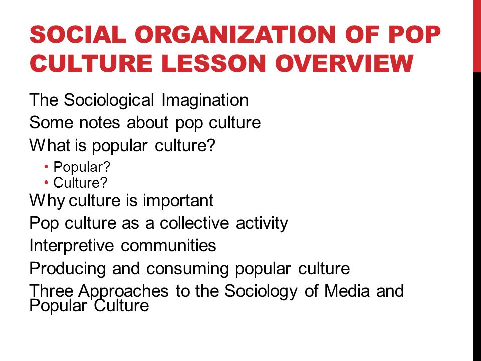 Social Organization of Pop Culture Lesson Overview