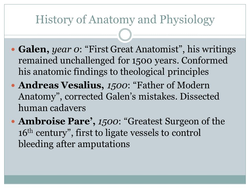History of Anatomy and Physiology