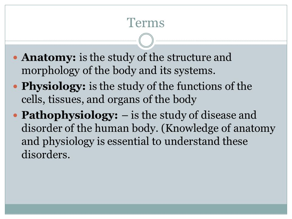 Terms Anatomy: is the study of the structure and morphology of the body and its systems.