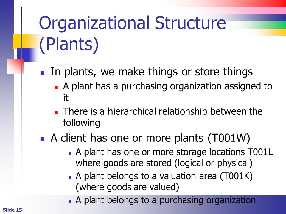 Organizational Structure (Plants)