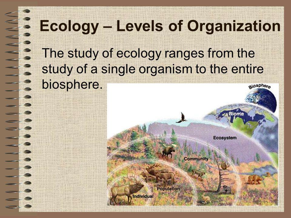 Ecology – Levels of Organization