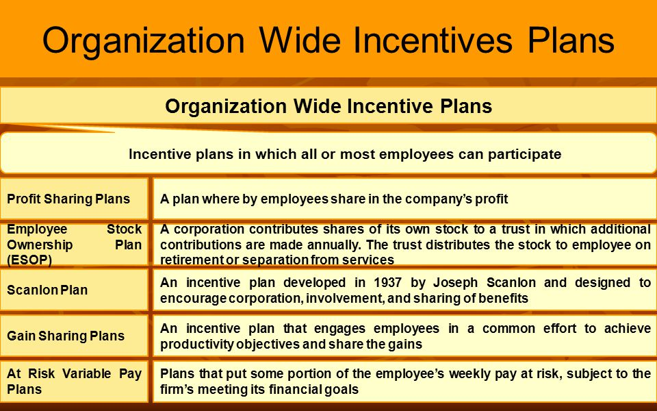 Organization Wide Incentives Plans
