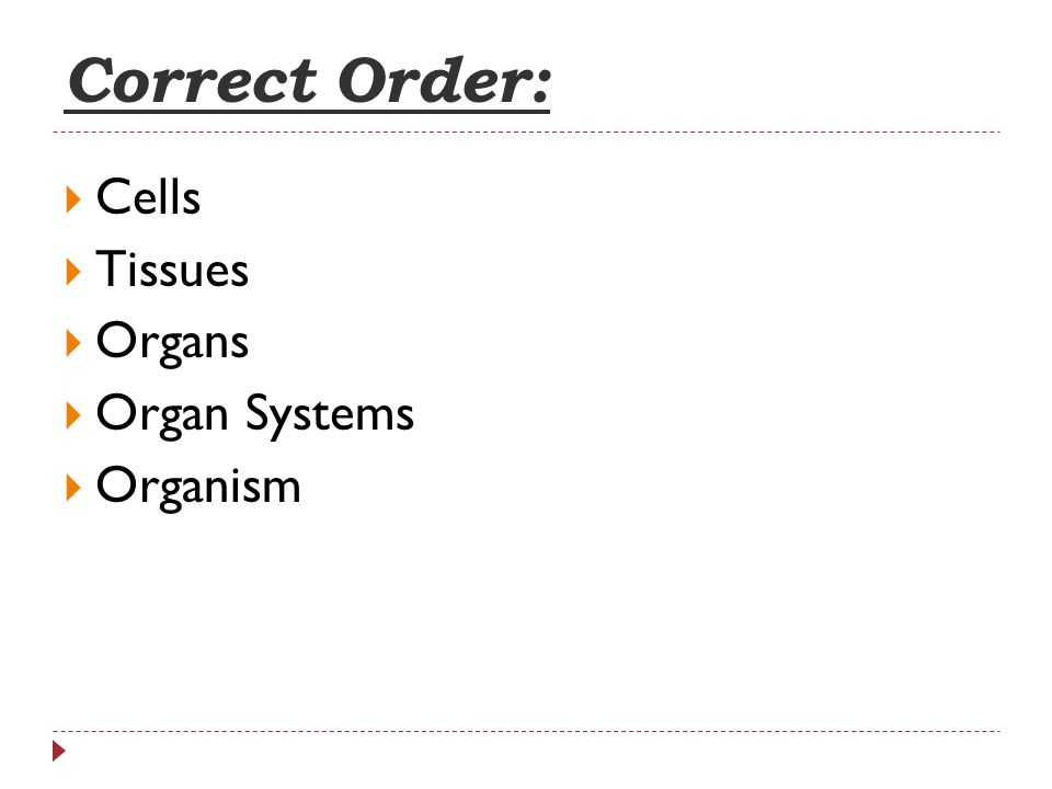 Correct Order: Cells Tissues Organs Organ Systems Organism