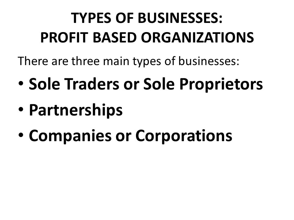 TYPES OF BUSINESSES: PROFIT BASED ORGANIZATIONS