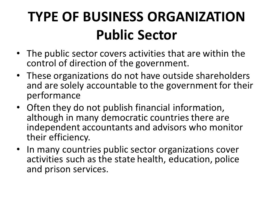 TYPE OF BUSINESS ORGANIZATION Public Sector