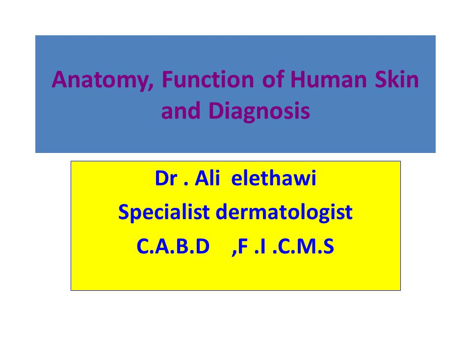 Anatomy, Function of Human Skin and Diagnosis