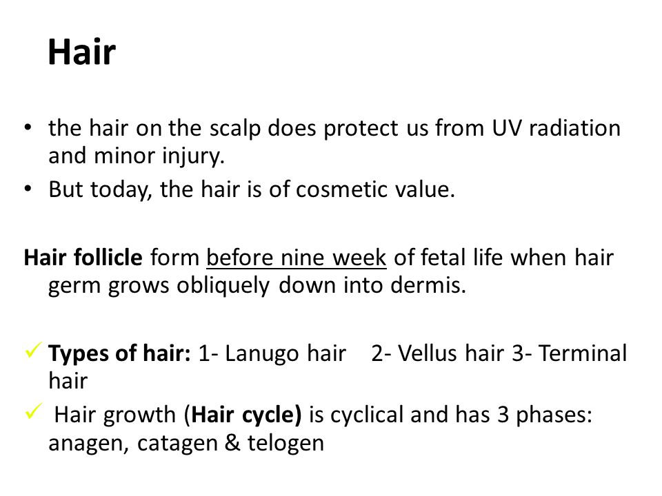 Hair the hair on the scalp does protect us from UV radiation and minor injury. But today, the hair is of cosmetic value.