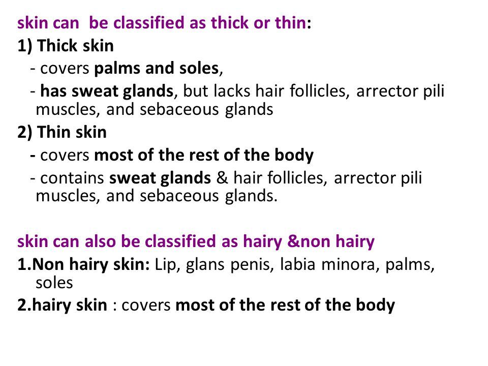skin can be classified as thick or thin: